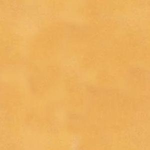 Amarillo 21